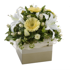 Sympathy Box Arrangement