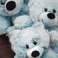 Blue Teddy Bears starting from