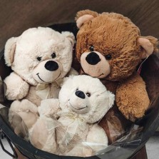 Neutral Teddy Bears starting from