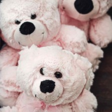 Pink Teddy Bears starting from